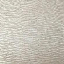 时尚蜥蜴纹